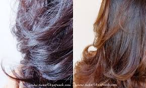 gambar tutorial ombre rambut ririeprams beauty blogger indonesia my new ash brown ombre hair by