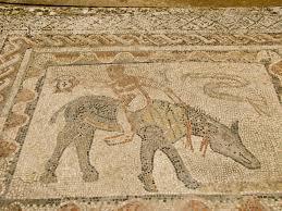 roman ruins volubilis morocco 9 pippa u0027s peregrinations