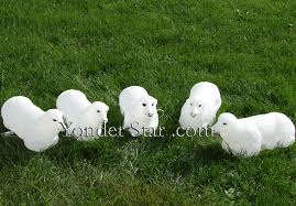 Outdoor Nativity Lighted - lighted white outdoor nativity flock of sheep yonder star
