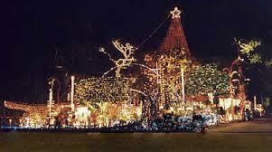palm harbor christmas lights christmasdisplay org