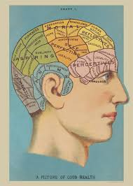Good Decorative Elements Amazon Com Poster Of Phrenology Vintage Art Picture Of Good