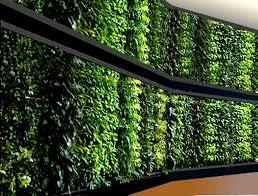 vertical garden wall vertical wall garden systems vertical garden