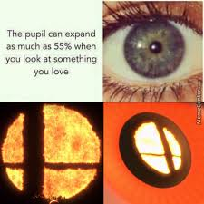 Smash Bros Memes - super smash bros memes best collection of funny super smash bros