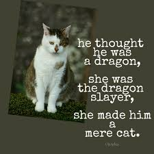 Mere Cat Meme - slay a cooking pot and twisted tales