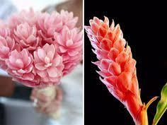 Wedding Flowers In October Garden Fresh Flowers In Season In October Chrysanthemums