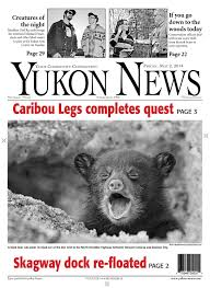 yukon news may 02 2014 by black press issuu