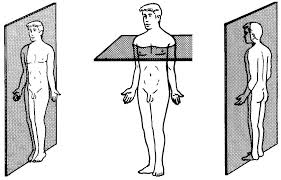 Human Anatomy Planes Of The Body 01 Introduction And Terminology Basic Human Anatomy