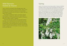 native edible plants southeast foraging 120 wild and flavorful edibles from angelica