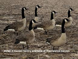 goose lawn ornaments and statues