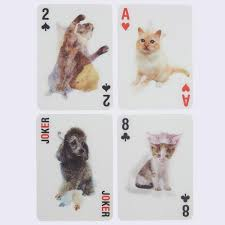 3 d cat cards giantrobotstore