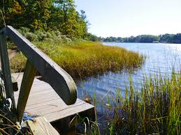 Table Rock Landing On Holiday Island by Chef Rosa Ross To Host Farm To Table Dinner In Her Home