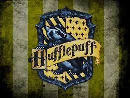 which hogwarts house would your valentine be in