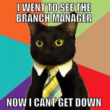 Ladder Meme - business cat meme can t get down off the business ladder of jobs