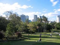 Botanic Gardens Brisbane City 10 Interesting Facts About Brisbane City Botanic Gardens