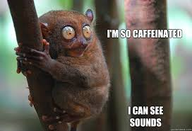I Can See Sounds Meme - i m so caffeinated i can see sounds caffeine quickmeme
