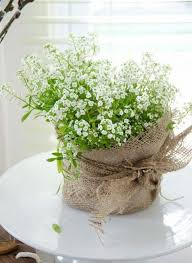 Potted Plants Wedding Centerpieces by 61 Cutest Potted Plants Ideas For Your Wedding Happywedd Com