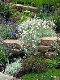 Rock Garden Cground Ground Cover Rock Garden Ideas For A Rockery For Great Rock Garden