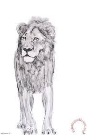 ausue lion painting lion print for sale