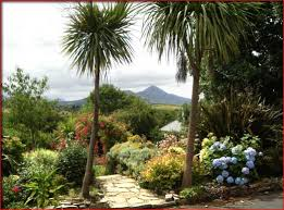 Ireland Bed And Breakfast Rates And Booking Facility For Aillmore Bed And Breakfast Westport