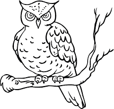 children owl coloring pages print painting picture