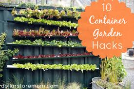 Container Gardening For Food - 10 recycled container gardening ideas dollar store mom