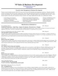 cover letter technology entrepreneur cover letter image collections cover letter ideas