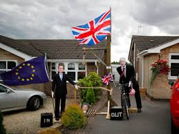 Flag Of Cameron 30 Of The Most Bizarre Images From 2016 Business Insider Nordic