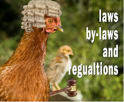 Backyard Chicken Laws by Keeping Chickens Laws By Laws And Regulations In The Uk
