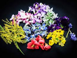 edible flowers for sale mandarin s exec chef talks edible flowers lifestyleasia