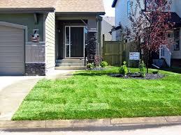 low maintenance landscaping ideas small front yard hill backyard