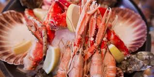 The Absolute Best Cheap Seafood by First Class Seafood Visit Norway