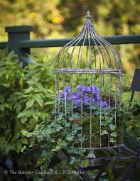 best 25 birdcage planter ideas on pinterest succulent display
