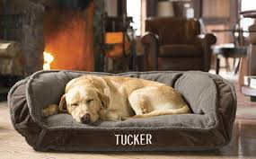 Tempur Pedic Dog Bed Orvis Dog Beds Free Standard Us Shipping Orvis Deep Dish Dog