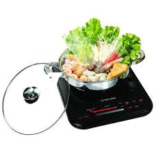 Portable Induction Cooktop Walmart 804 Best Boat Searay Remodel Images On Pinterest Teak Boat