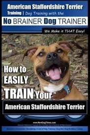 american eskimo dog training american eskimo american eskimo dog training aaa akc think like a