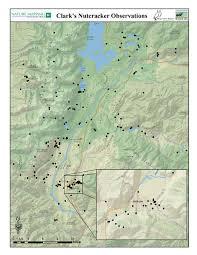 Jackson Hole Wyoming Map Clark U0027s Nutcracker Project Jackson Hole Wildlife Foundation