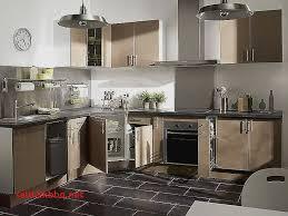 cuisine fonctionnelle leroy merlin meuble bas cuisine pour idees de deco de cuisine unique