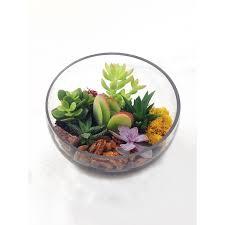 asymmetrical tabletop glass terrarium readymade