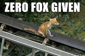 Animal Pun Meme - puns fox funny puns pun pictures cheezburger