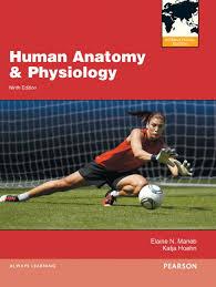 Human Anatomy And Physiology 8th Edition Human Anatomy And Physiology Elaine Marieb 8th Edition Page 2 Free