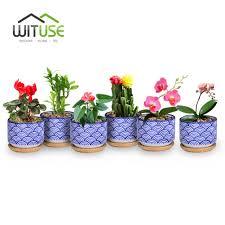 wituse 6pcs flowerpots succulent plants pots decorative ceramic