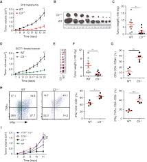 autocrine complement inhibits il10 dependent t cell u2013mediated