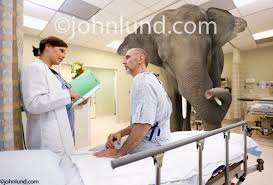 recovery room nurse an elephant in the recovery room is an unpleasant truth in this