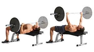 Proper Bench Form How To Do A Bench Press With Proper Form Enter The Pit