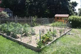 decorative wire garden fence home gardens
