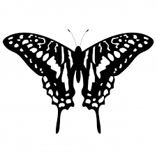 flying butterfly silhouette