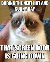 Hot Day Meme - during the next hot cat meme cat planet cat planet