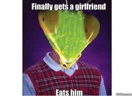 Mantis Meme - bad luck mantis memes imglulz funny pictures meme lol and