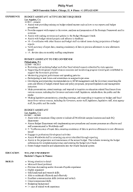 resume exles for teachers pdf to excel budget assistant resume sles velvet jobs