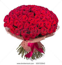 big bouquet of roses roses bouquet stock images royalty free images vectors
